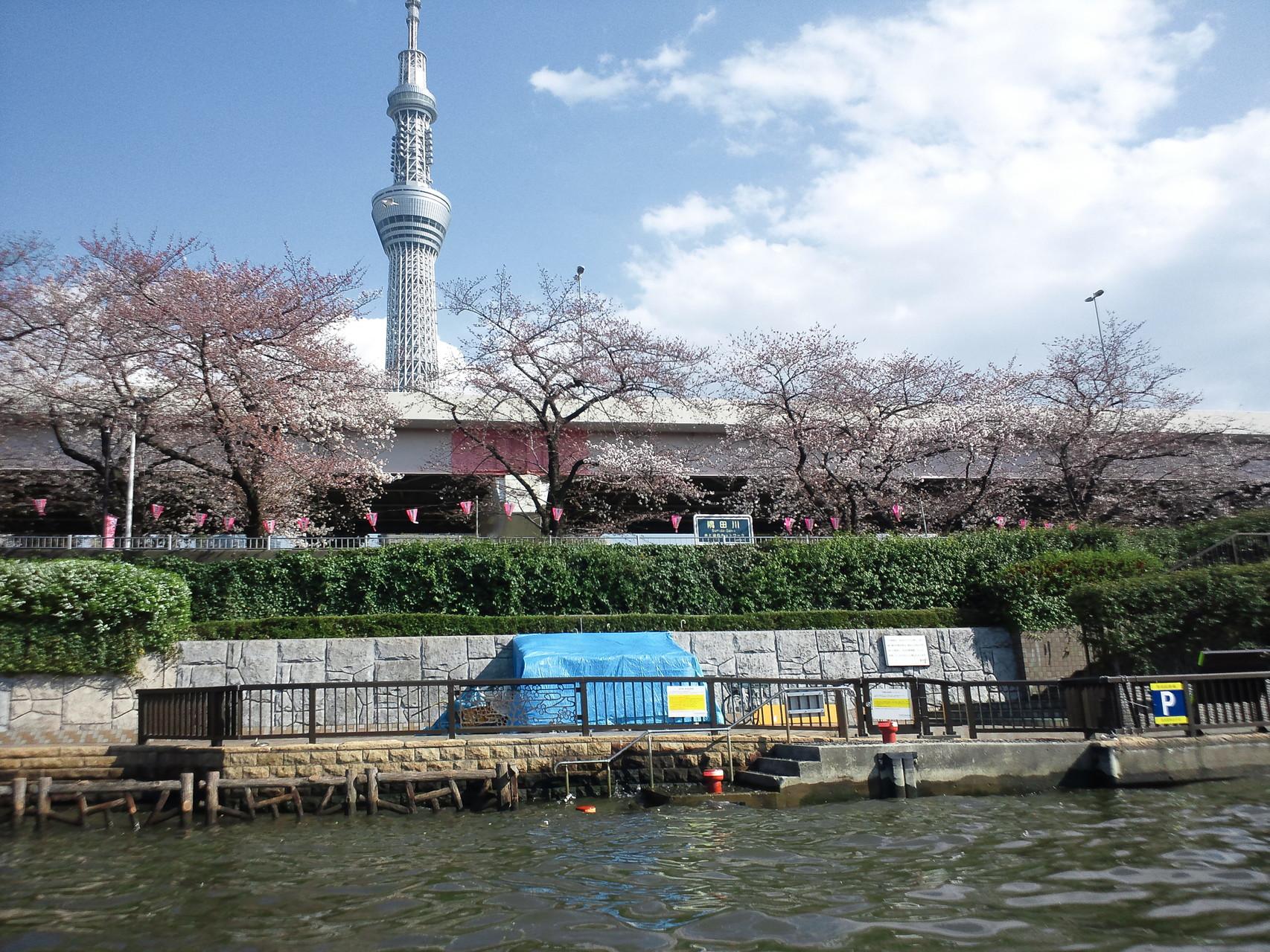 東京湾・名所巡りで操船スキルアップ!