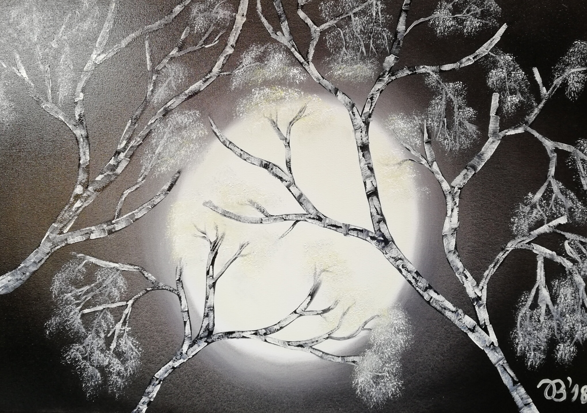 (70)     Mondbirke     70 cm x 50 cm
