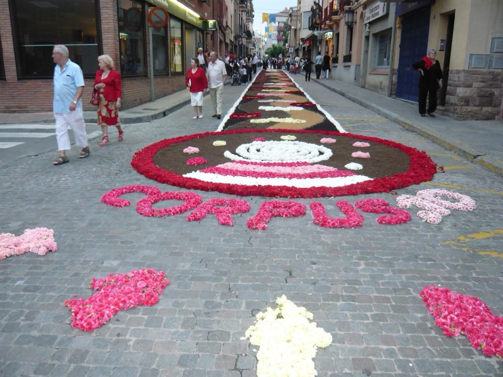 6/6/2010 Catifa del C/ Banys II