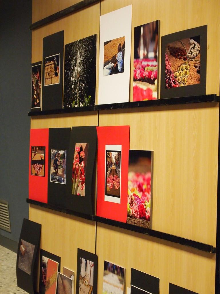 Les fotografies finalistes, segons el jurat