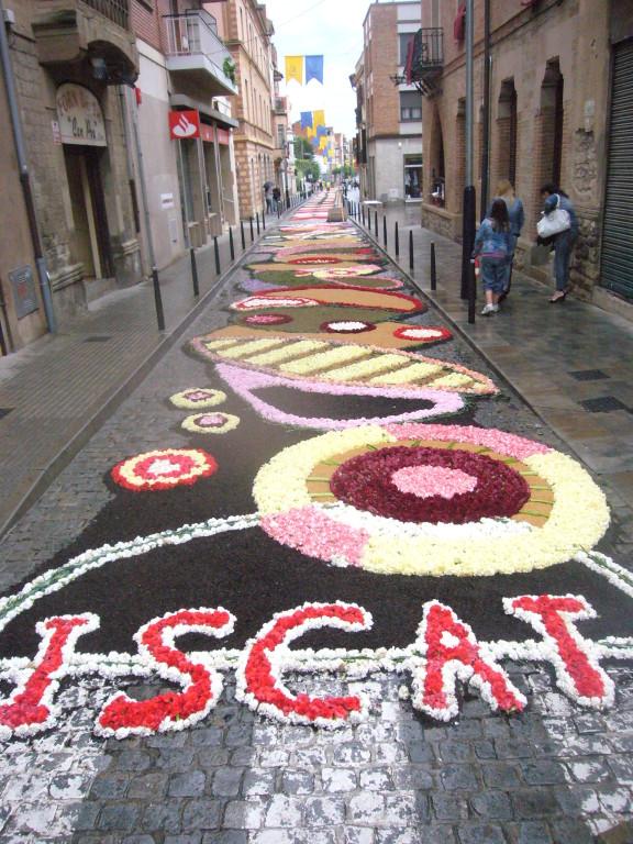 6/6/2010  ISCAT