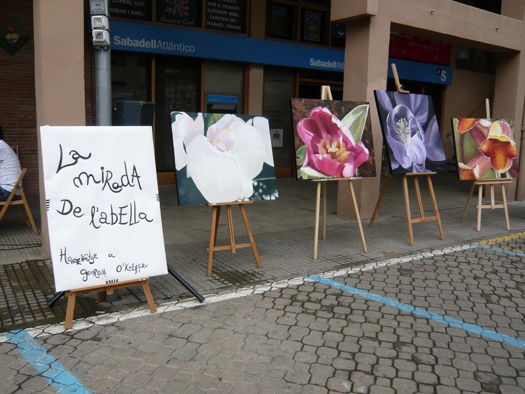 6/6/2010 Exposició la Mirada de l'Abella (la Mà del Tintorer)