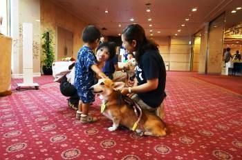 「いってみぃひん」 サマーカーニバル in 奈良ロイヤルホテル にて(2014.8.24)