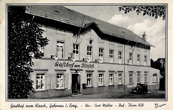 """""""Hirsch"""" Gelenau"""