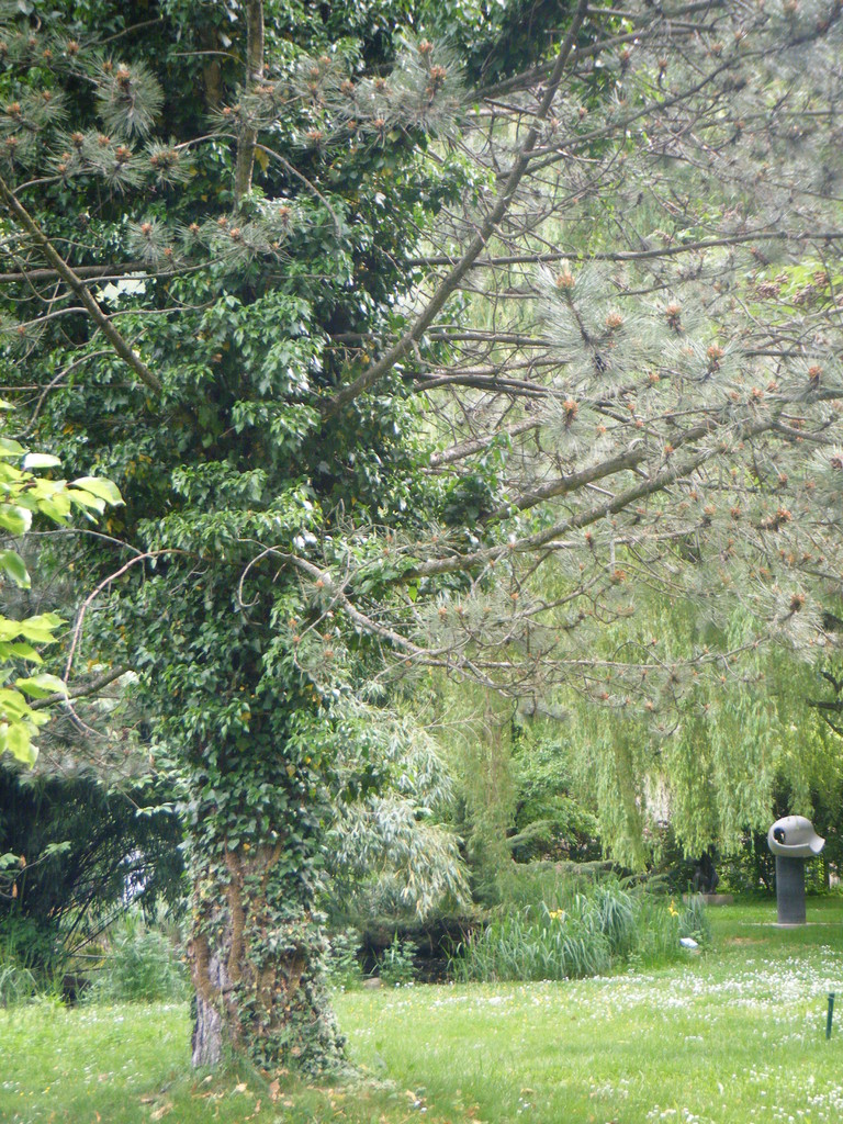 Dans les jardins...