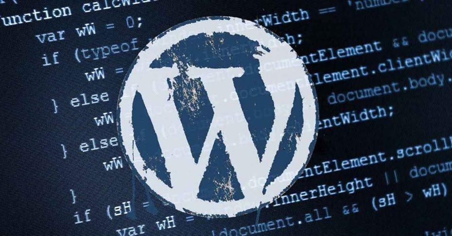 Wordpress y sus Vulnerabilidades