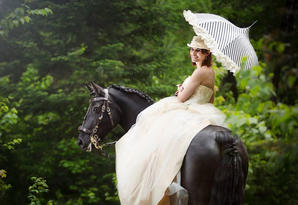 Mise à disposition de chevaux pour séance photos