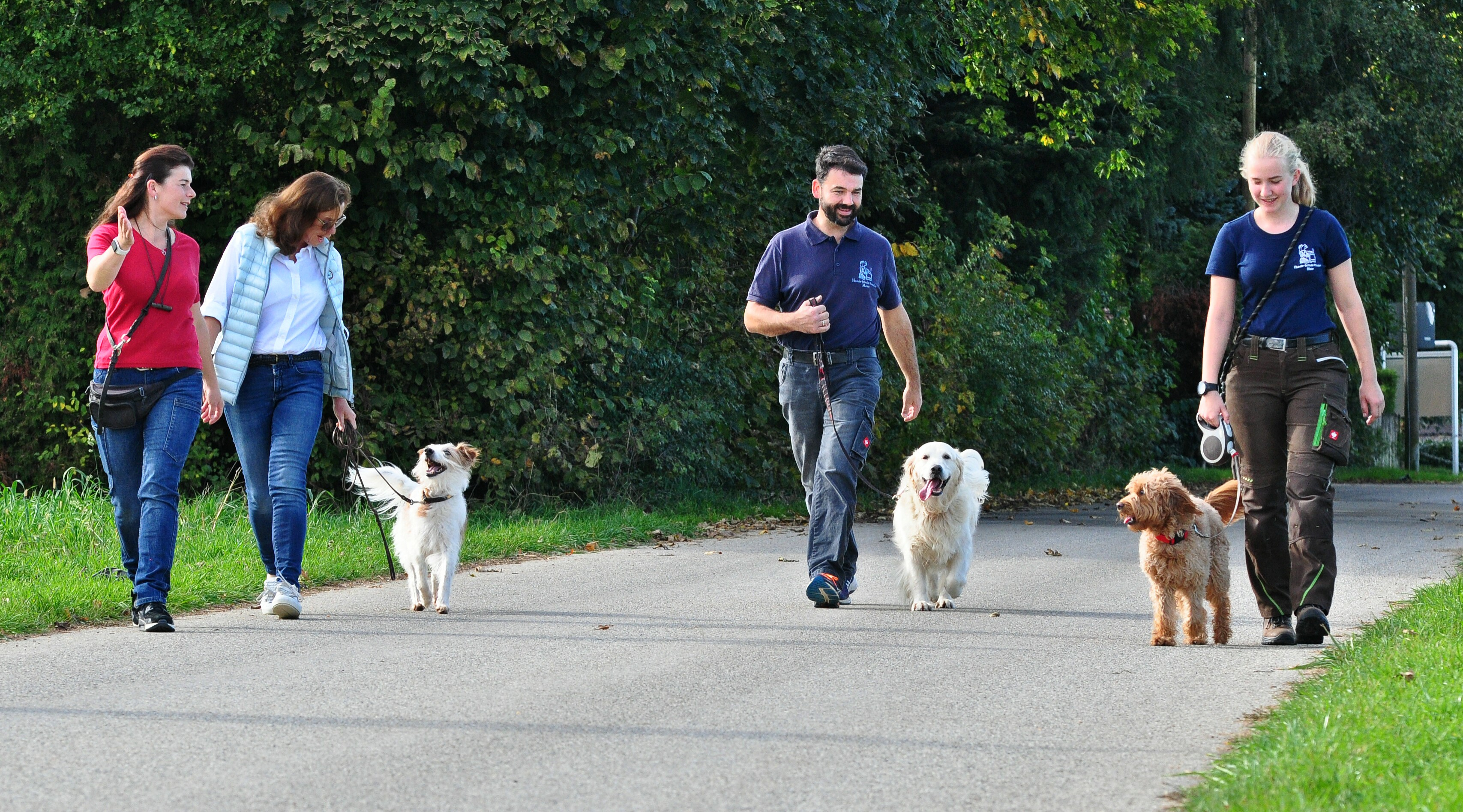Dog School Hundepension Maier Hundeschule Maier München Und