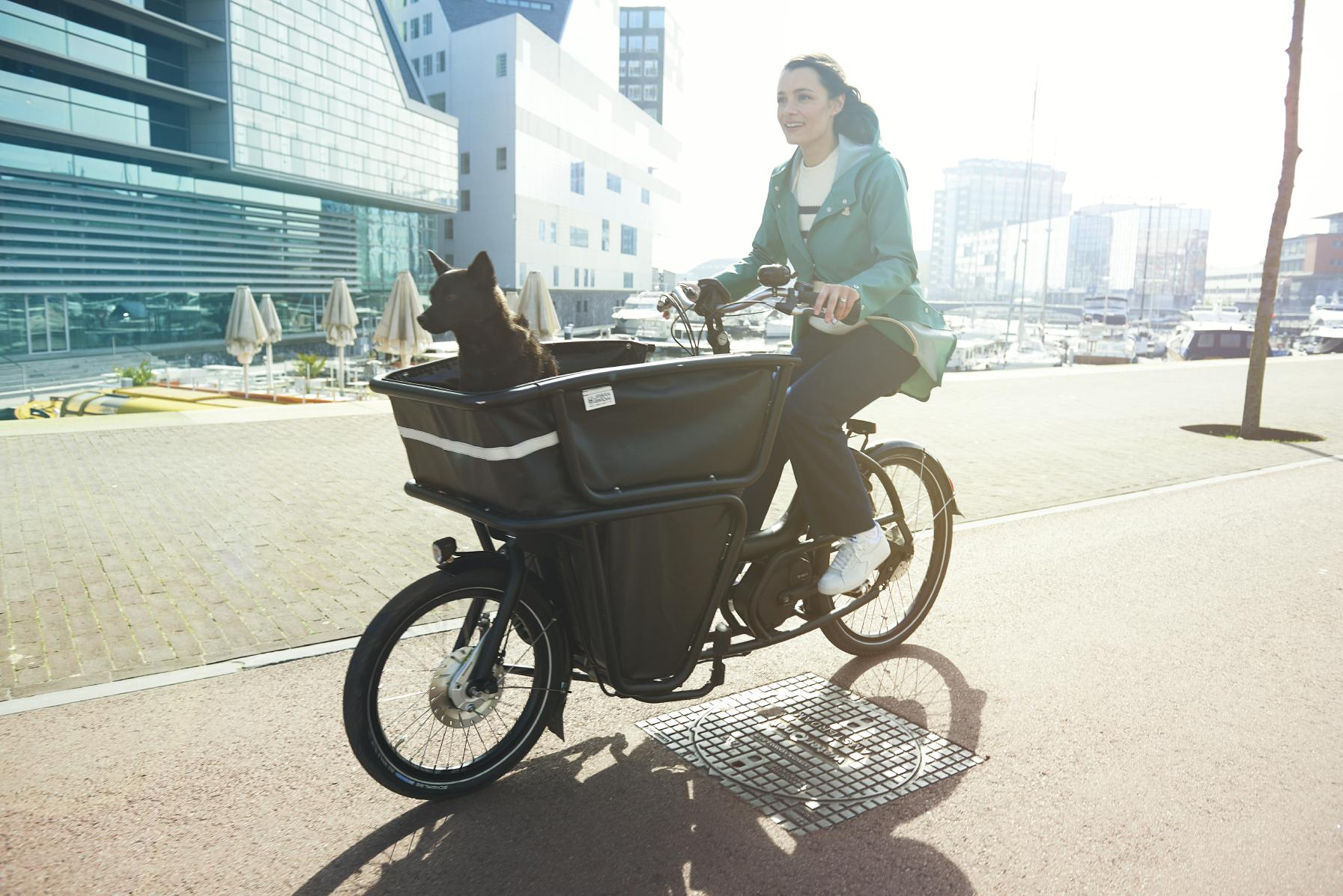 lasten e bike in hannover e motion e bike experten. Black Bedroom Furniture Sets. Home Design Ideas