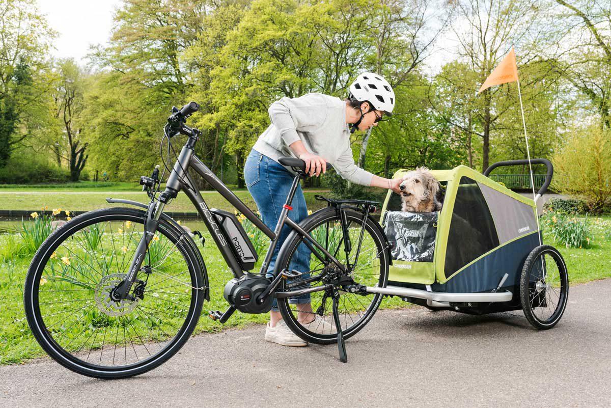 Croozer Dog Jokke - für große Hunde