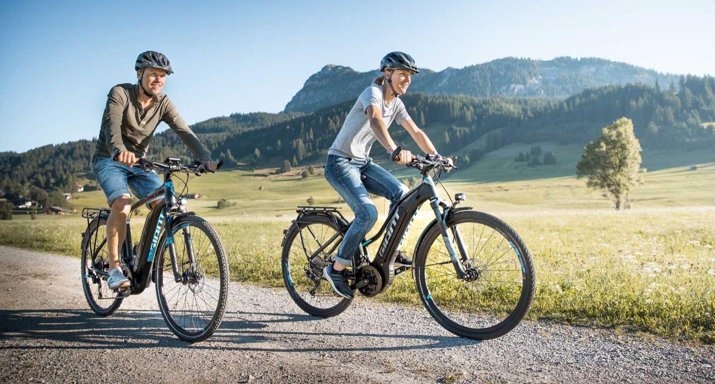 alle e bike typen 2017 im berblick jetzt probefahrt vereinbaren e motion e bike experten. Black Bedroom Furniture Sets. Home Design Ideas