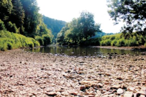 Flussdurchfahrt Segway Tour