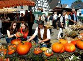e-Bikes, Pedelecs und Speed Pedelecs erleben, Probefahren und kaufen auf dem Herdecker Herbstfest im September
