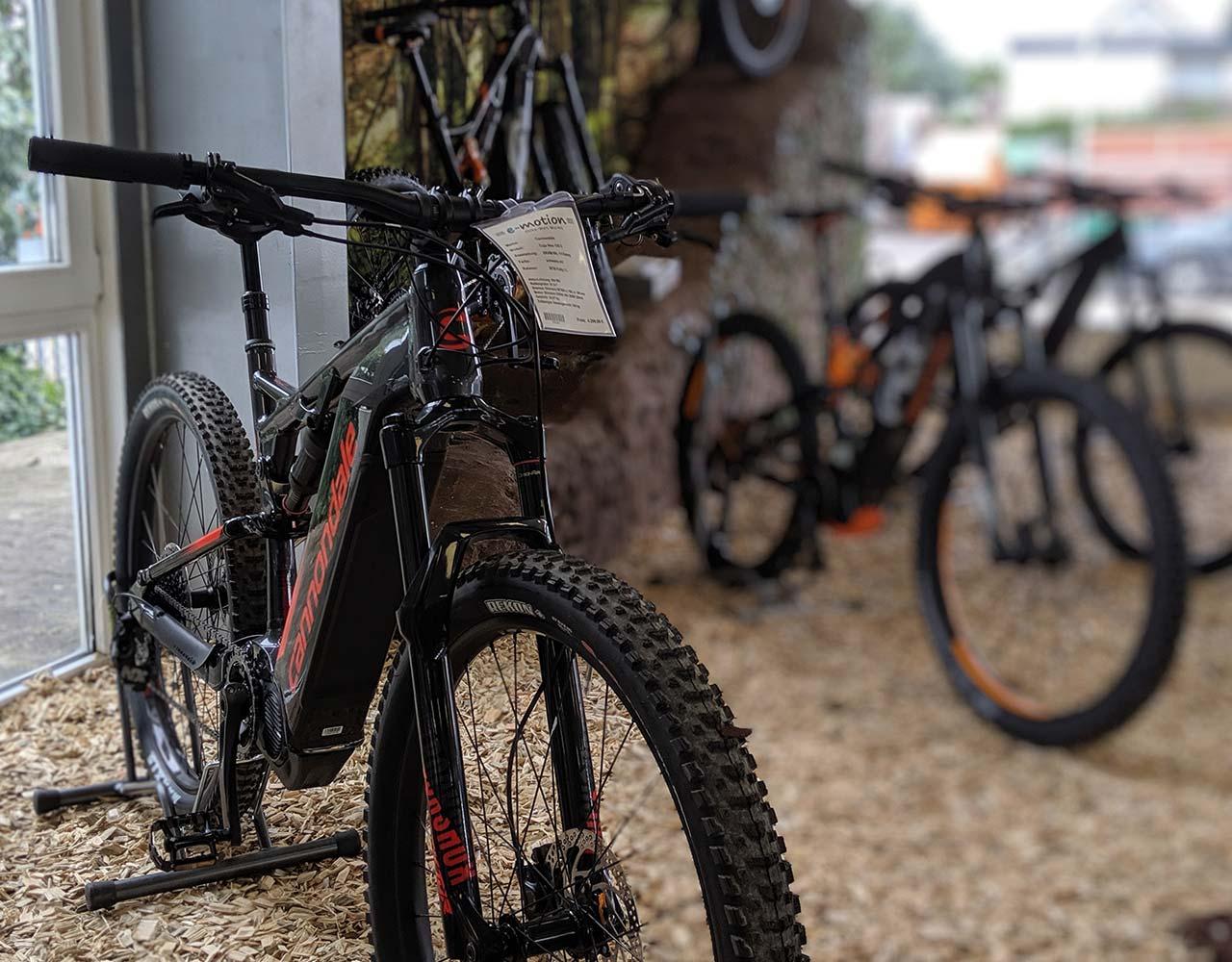 ...Unsere große Auswahl an Top e-MTBs bietet für jeden Mountainbiker das richtige Gefährt!