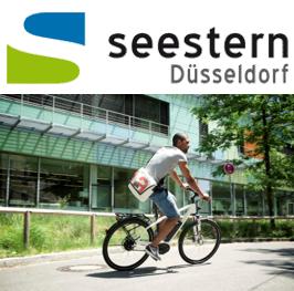 initiative seestern