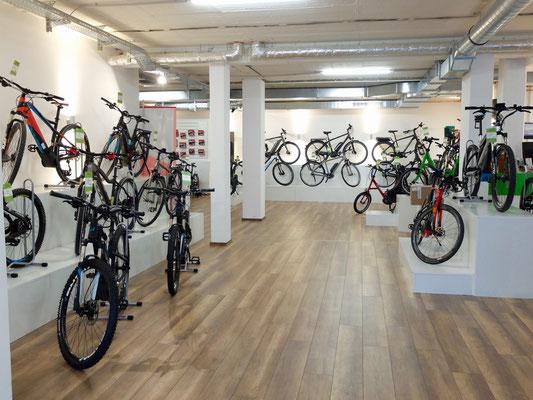 e-Bikes leasen in Braunschweig