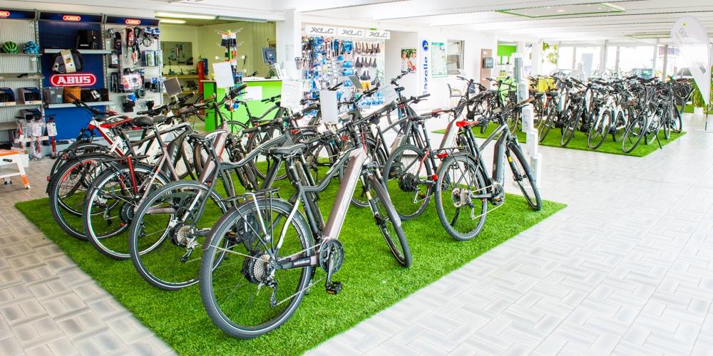 e-Bikes und Pedelecs von BH emotion, Giant, Haibike, Herules, Raleigh, Riese und Müller, Sinus, Stromer und Winora