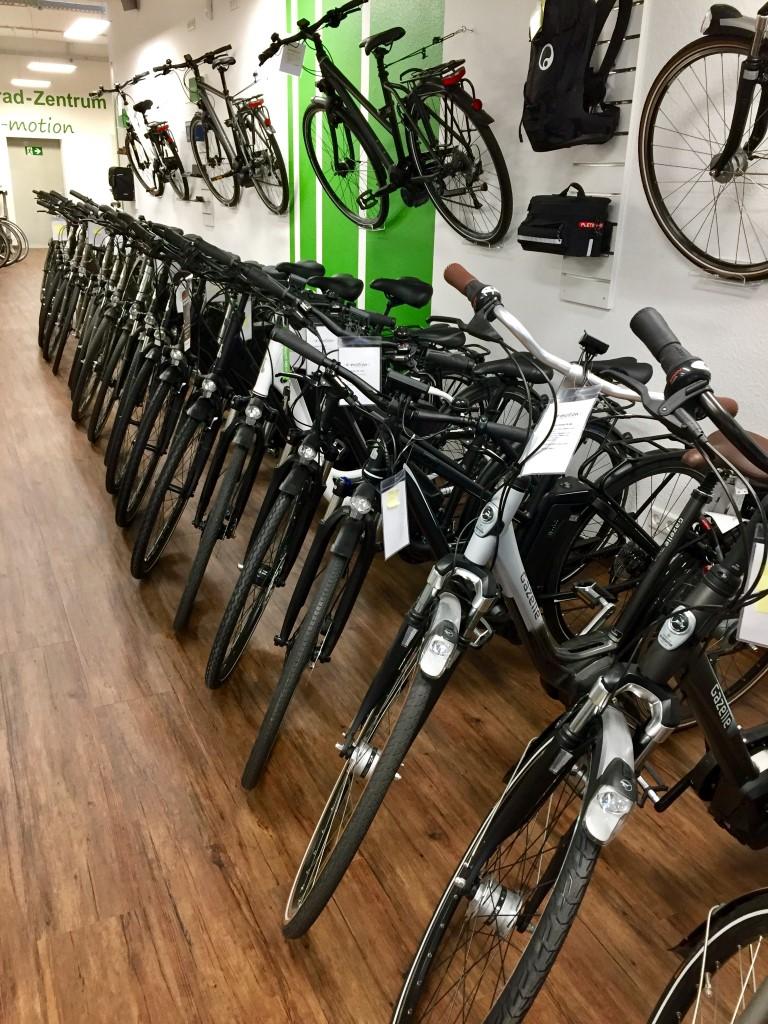 Vielfältige e-Bike Auswahl
