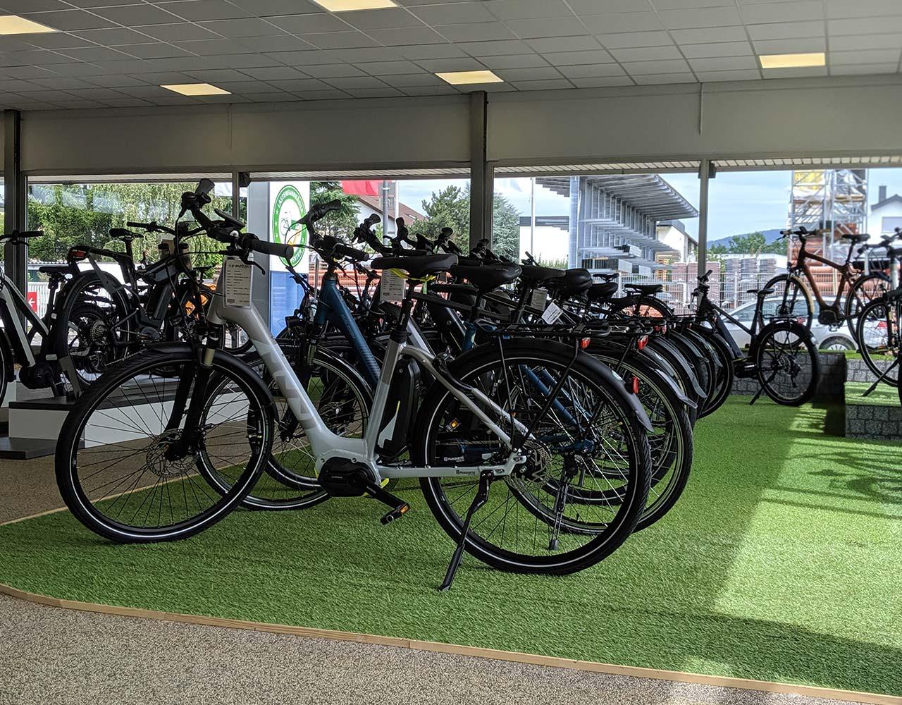 Die Allrounder - Top Trekking e-Bikes von Top Marken