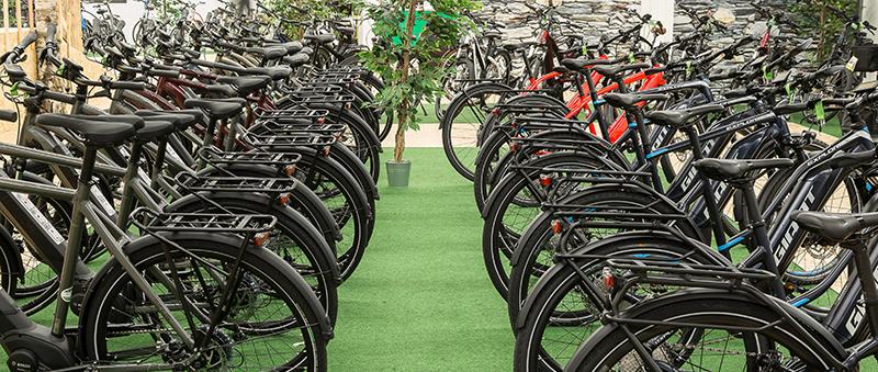 Eine große e-Bike Auswahl in der e-motion e-BIke Welt Nürnberg!