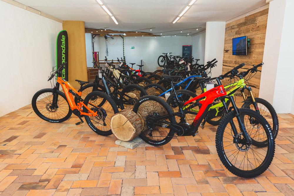 Starke Marken 3 - große Auswahl in der e-motion e-Bike Welt Worms