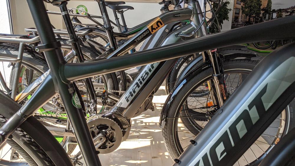 Haibike und Giant Modelle in der e-motion e-Bike Welt Westhausen