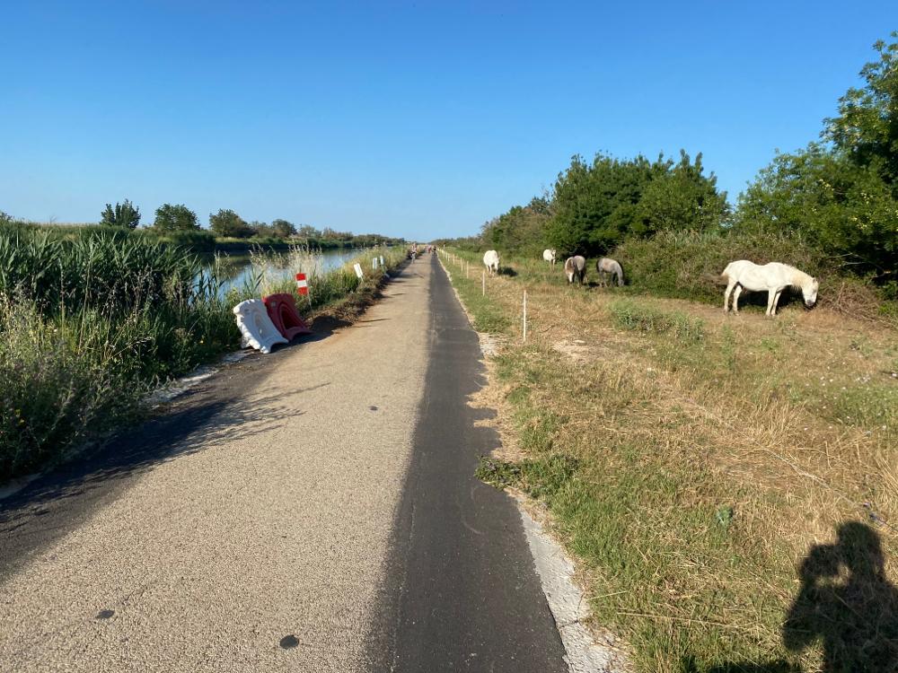 Am Kanal entlang richtig Ziel