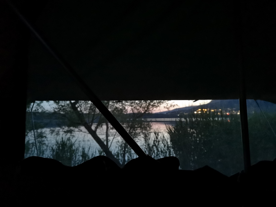 Der Blick aus dem Dachzelt, und glücklicherweise hinter den Mückengittern☺️