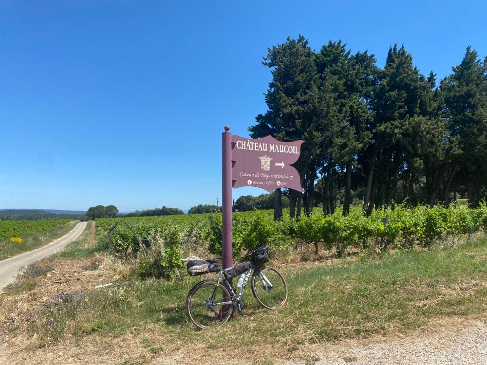 Definitiv ir Weinregion acho🤪