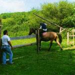 poney club de cenves séjour équestre 13