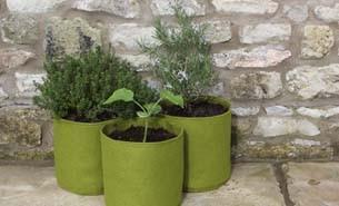 Urban Gardening Vigeroot Pflanztaschen in grün für Kräuter