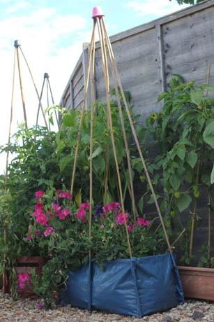 Urban Gardening Pflanzsack in blau mit Bambusstäben für Bohnen