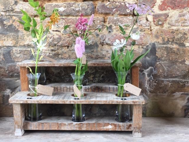 Blog - The golden Rabbit - beste Gartengeräte für ...