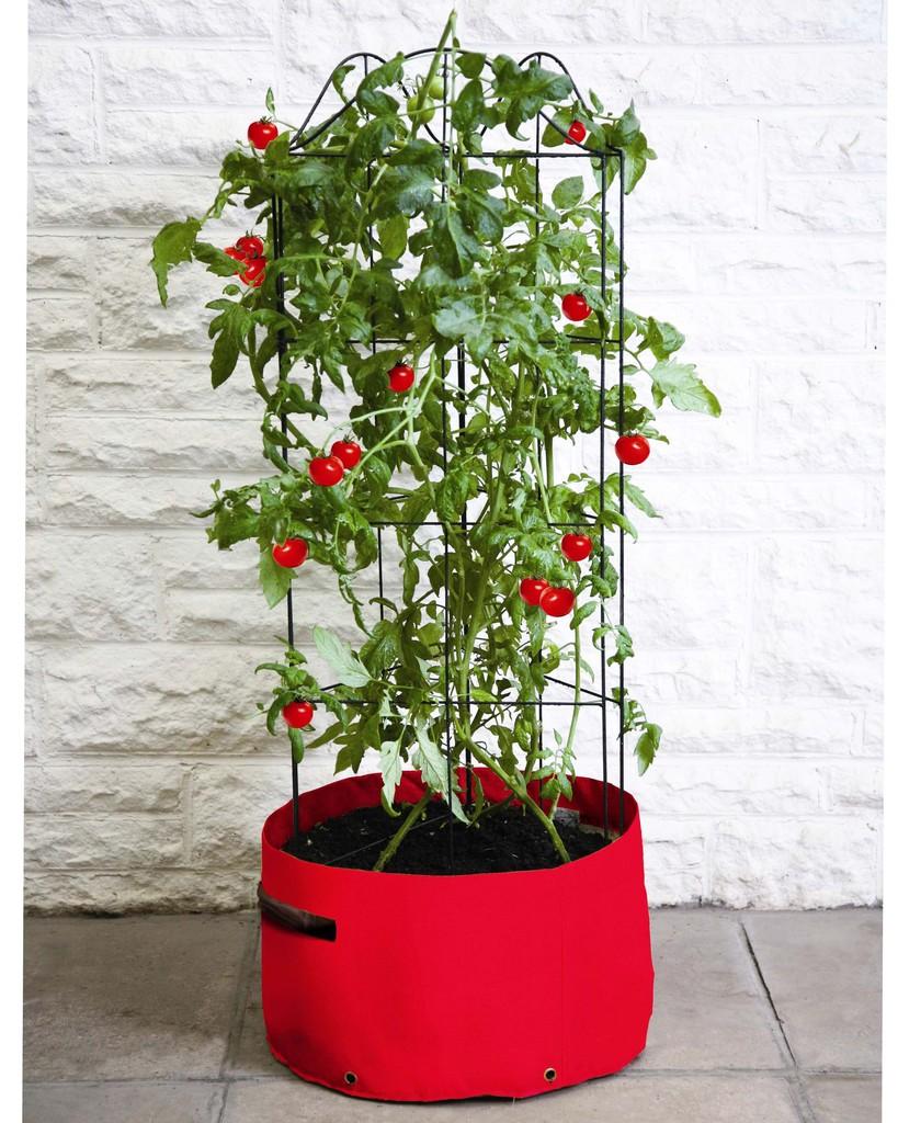 haxnicks pflanzs cke f r das urban gardening the golden. Black Bedroom Furniture Sets. Home Design Ideas