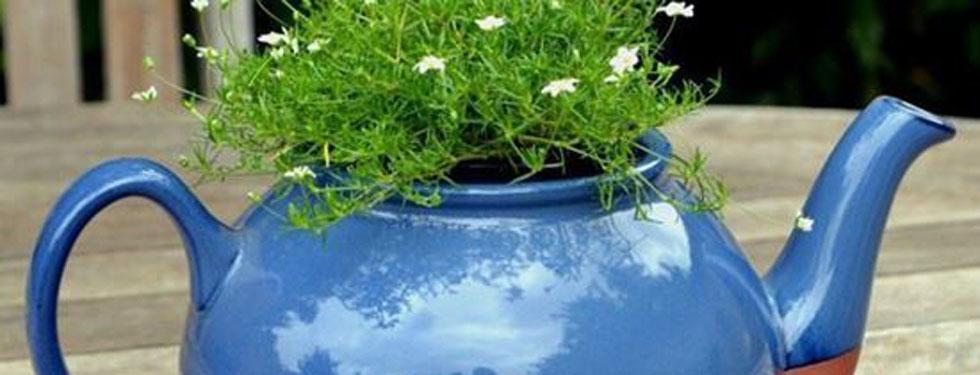 Was braucht man zum Urban Gardening ? Schachtel gefüllt mit Seedballs und einer kleinen Stecklingsschere auf einem alten Gartenstuhl