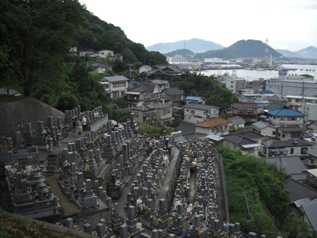 元宇品墓地②