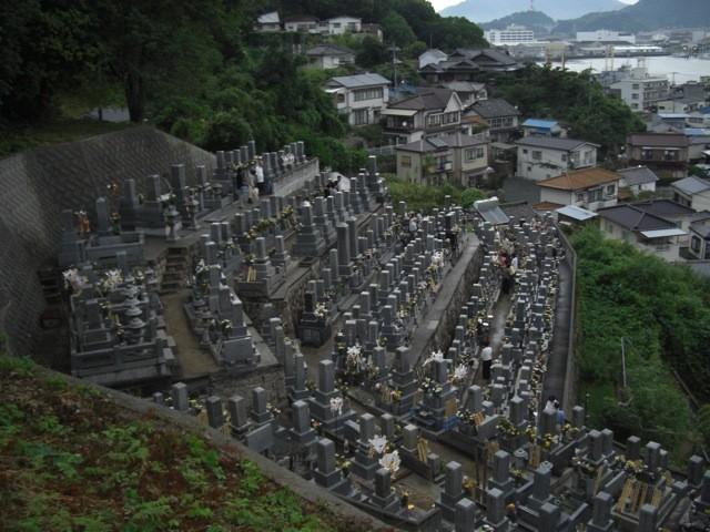 元宇品墓地①