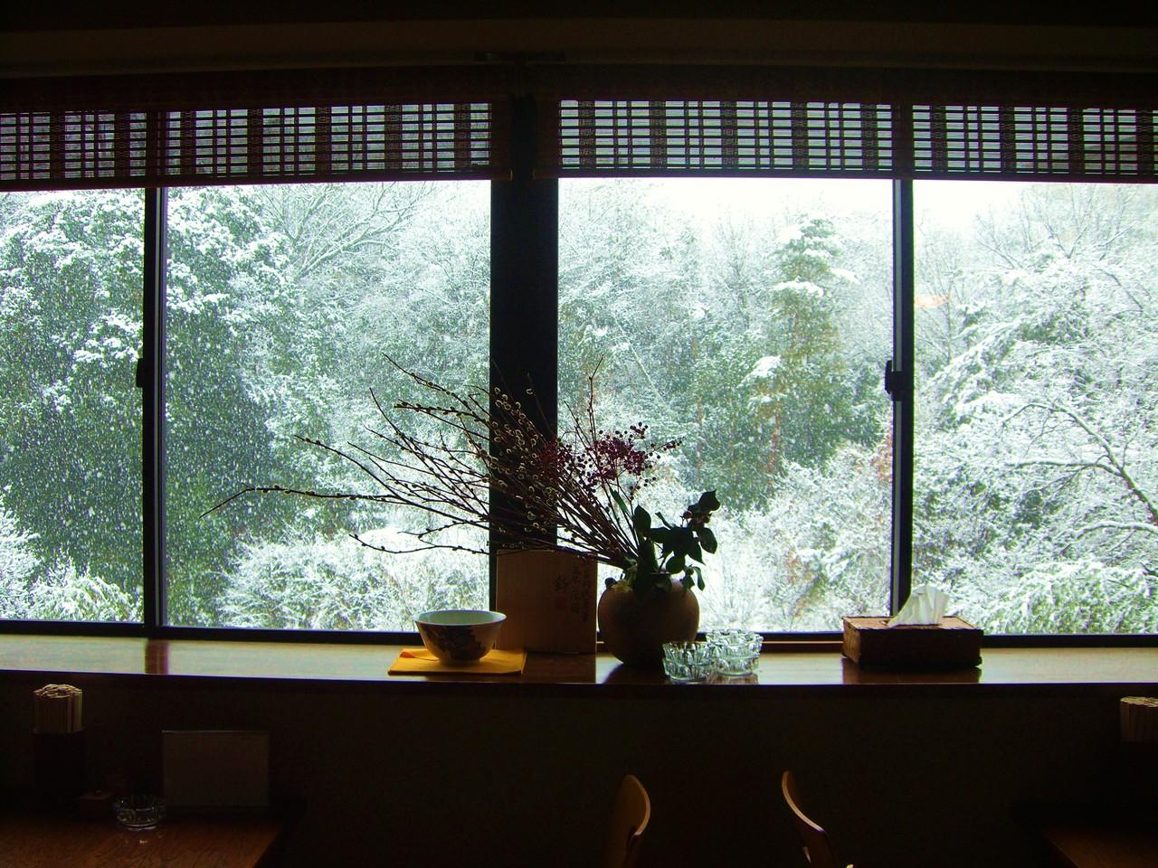 雪の日はこんな景色も