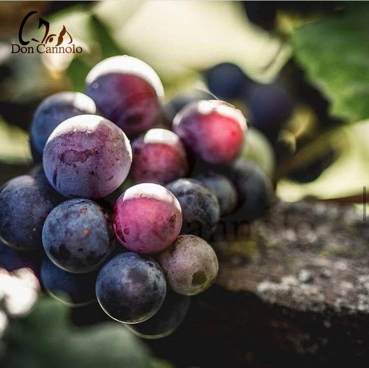 vendita-online-uva-rossa-di-sicilia-siracusa