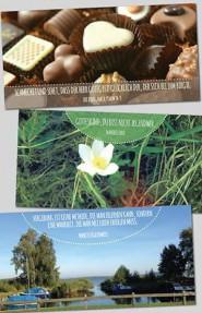 Kartenbox mit 10 Faltkarten u. Umschlägen; Mutmach-Themen II