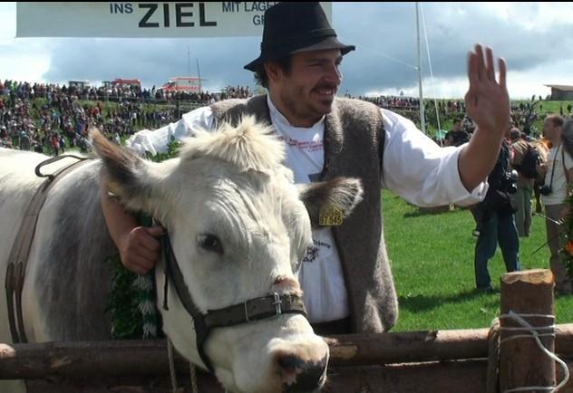 Ochsenrennen von Rolf Rachor