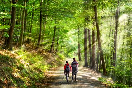 Probleme besprechen gehen Depression Burnout Strategien zuhören Coaching Wolfgang Holzbauer Gersthofen Augsburg Teamtu Johanna Feltl Familienstellung Energiearbeit