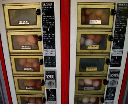 Unha máquina de ovos frescos.