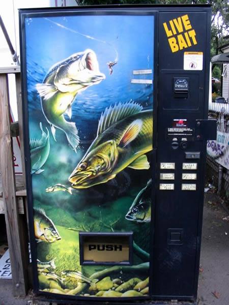 Máquina expendedora de gusanos vivos para pescar.