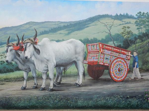 Die Ochsenwagen sind UNESCO Weltkulturerbe