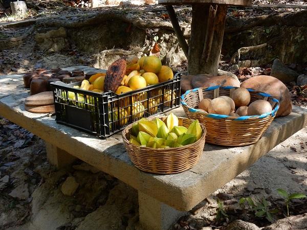 Produkte aus seinem Garten