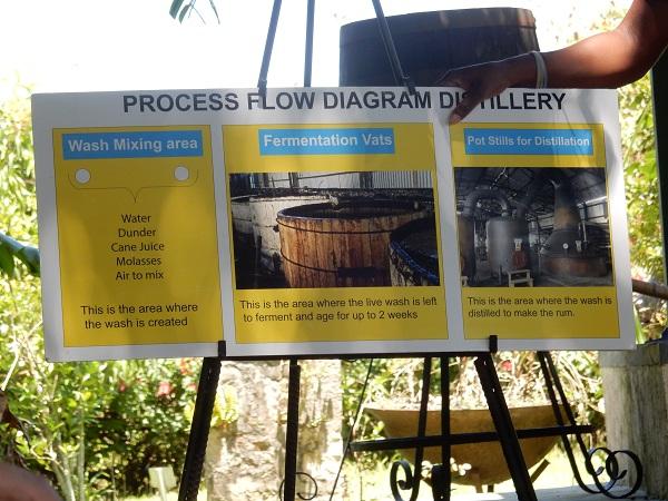 Uns wird die Rumproduktion erklärt
