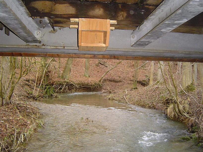 Brutplatzangebot für Wasseramsel und Gebirgsstelze / Foto: D. Singer