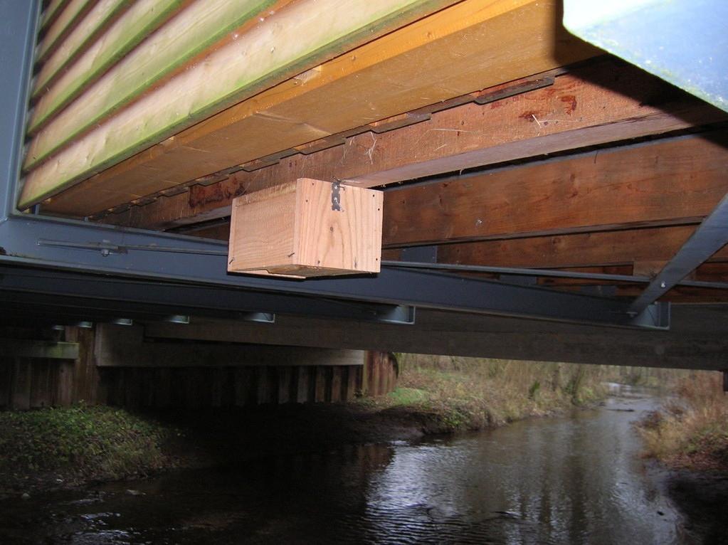 Wasseramselnistkasten unter einer Brücke / Foto: D. Singer