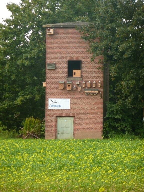 Trafoturm bei Brakel mit diversen Nistkästen zur Ansicht / Foto: D. Singer